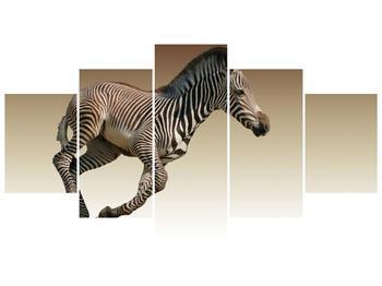Obraz běžící zebry (F002416F150805PCS)