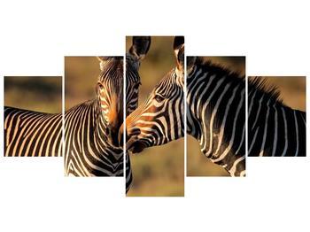 Obraz dvou zeber  (F002641F150805PCS)