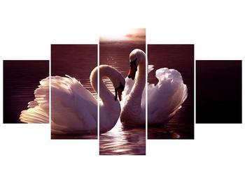 Obraz labutí na jezeře  (F002698F150805PCS)