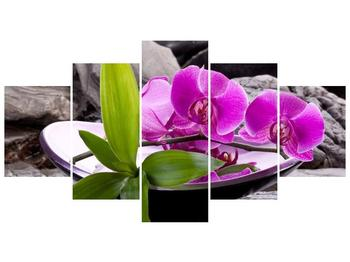 Obraz fialových orchidejí v míse (F004029F150805PCS)