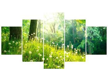 Pětidílný obraz F005997F150805PCS (F005997F150805PCS)