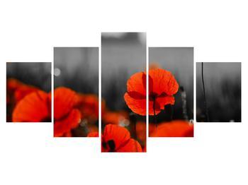 Obraz vlčích máků (K011024K150805PCS)