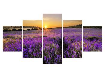 Obraz levanduľového poľa (K011154K150805PCS)