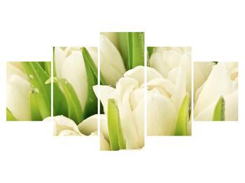 Obraz květů tulipánů (K011254K150805PCS)