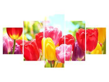 Obraz tulipánů  (K011255K150805PCS)