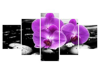 Obraz květů orchideje (K011379K150805PCS)
