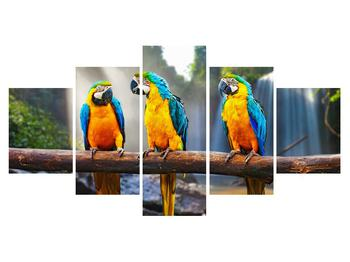 Tablou cu papagali (K011994K150805PCS)