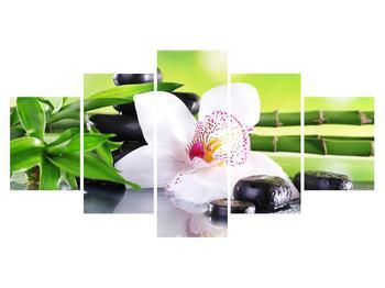 Orchidea képe (K011995K150805PCS)