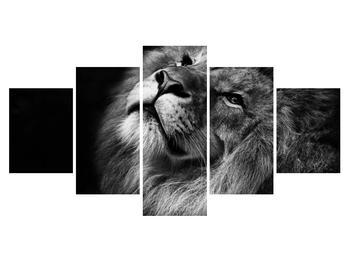 Černobílý obraz lva (K012767K150805PCS)