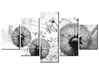 Černobílý obraz chmýří pampelišek (K014116K150805PCS)