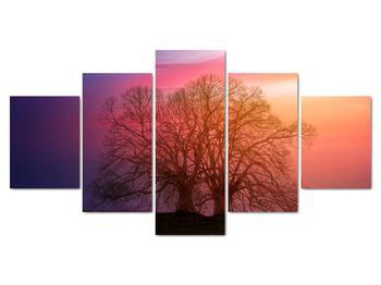 Obraz stromov v hmle (V020088V150805PCS)