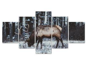 Obraz - jeleň v zime (V020179V150805PCS)