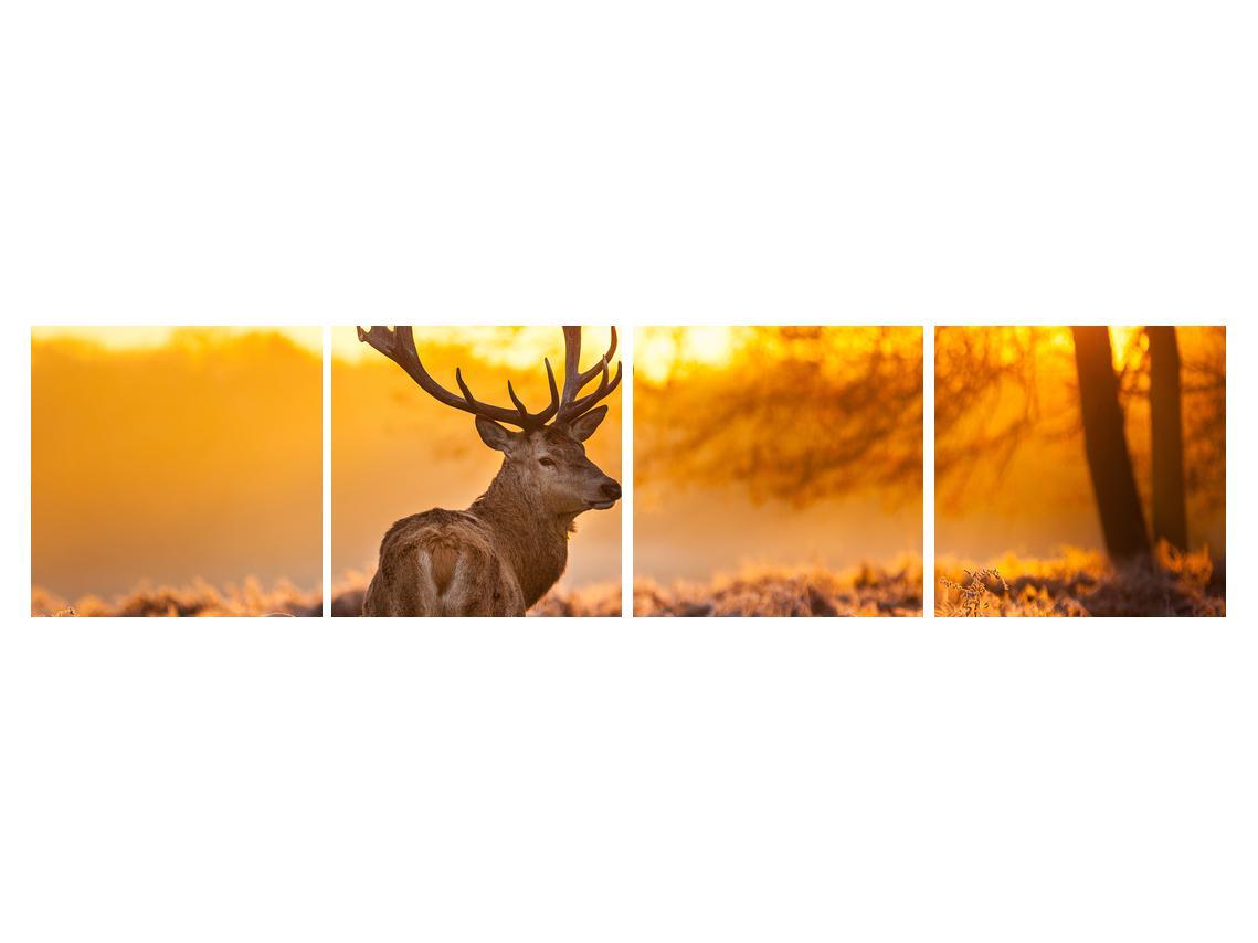 Slika jelena (K011281K16040)