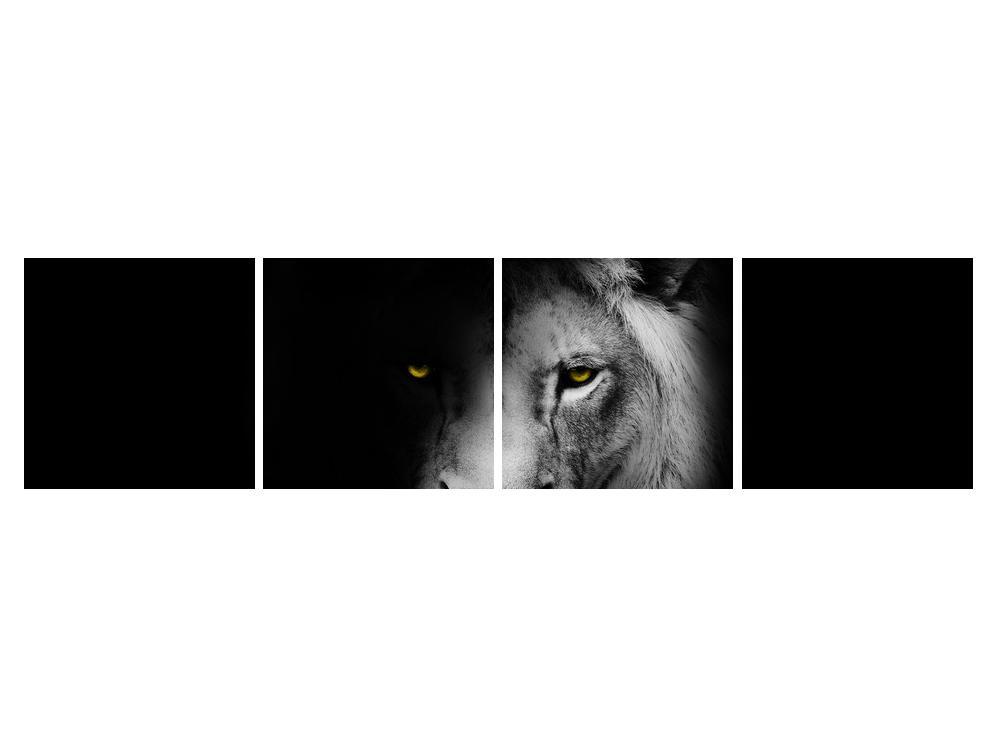 Slika lava (K011394K16040)
