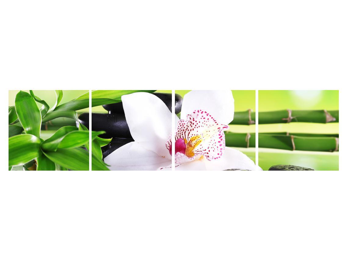 Slika orhideje (K011995K16040)