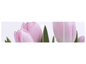 Obraz růžových tulipánů (F000389F16040)
