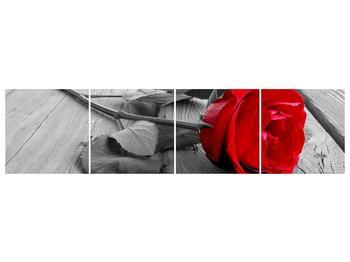 Obraz růže (F000484F16040)