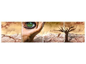 Obraz oka na dlaňi (F001485F16040)