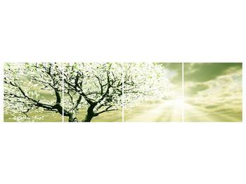 Obraz stromu na jaře (F002291F16040)