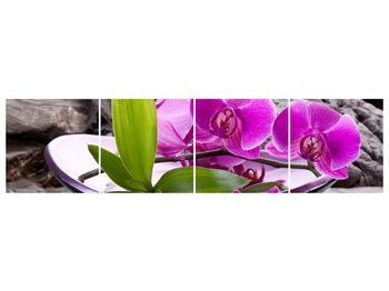 Obraz fialových orchidejí v míse (F004029F16040)