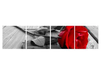 Obraz červenej ruže (K011138K16040)