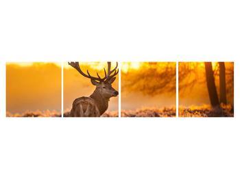 Obraz jeleňa (K011281K16040)