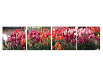 Obraz kvetín (K012048K16040)