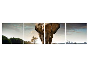 Tablou cu elefant (K012479K16040)