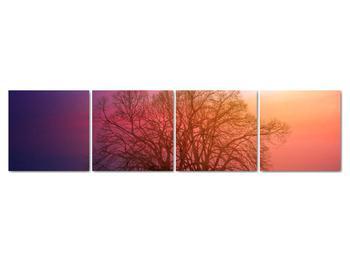 Obraz stromov v hmle (V020088V16040)