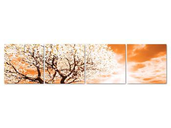 Oranžový obraz stromu (V020095V16040)