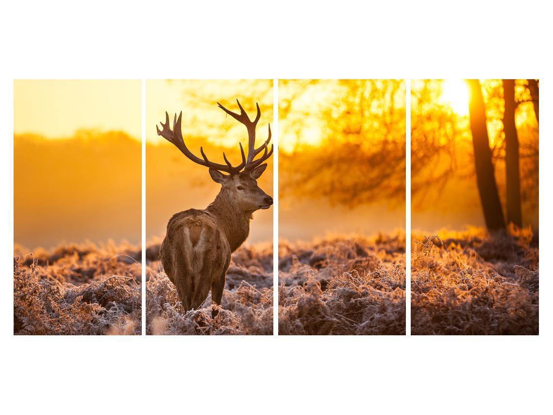 Slika jelena (K011281K16080)