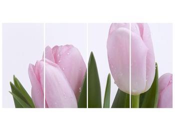 Obraz růžových tulipánů (F000389F16080)