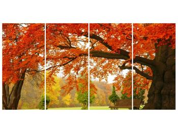 Krásný obraz podzimního parku (F001312F16080)