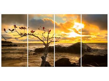 Obraz suchého stromu (F001464F16080)