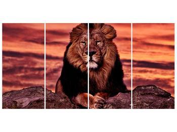 Obraz krále zvířat (F001507F16080)
