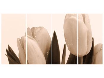 Krásný obraz tulipánů (F001883F16080)