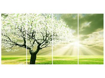 Obraz stromu na jaře (F002291F16080)
