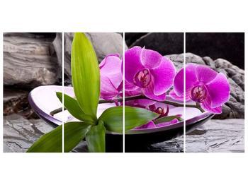 Obraz fialových orchidejí v míse (F004029F16080)