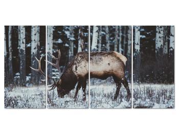 Obraz - jeleň v zime (V020179V16080)