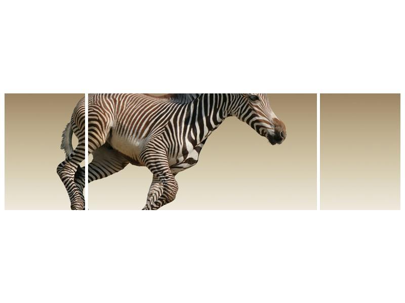Obraz běžící zebry (F002416F17050)