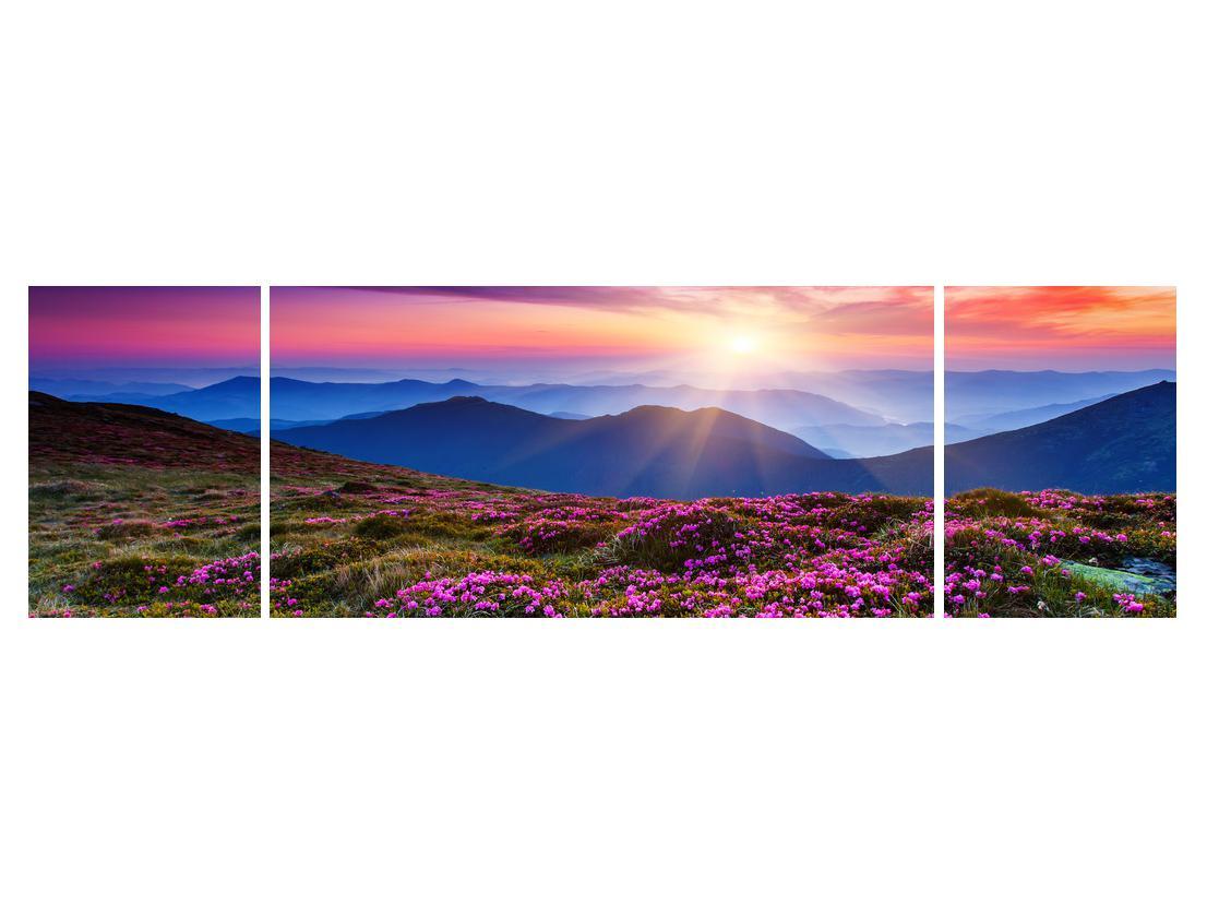 Slika planinskog rascvijetalog krajolika (K011322K17050)
