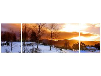 Obraz zimní krajiny (F000031F17050)
