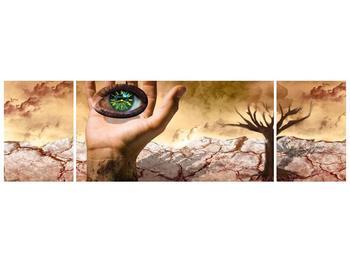 Obraz oka na dlaňi (F001485F17050)