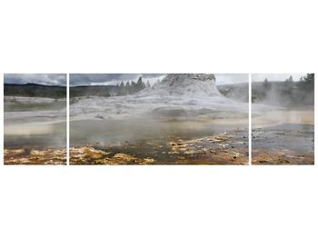Obraz jev přírody (F001553F17050)
