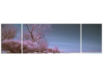 Obraz zimní přírody (F001591F17050)
