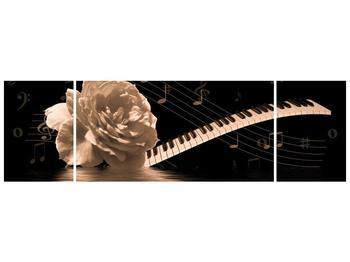 Černobílý obraz růže a klavíru (F001875F17050)