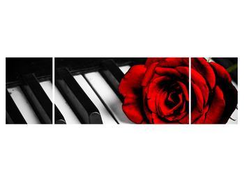 Zongora és egy rózsa képe (K011229K17050)