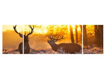 Obraz jelenů (K011267K17050)