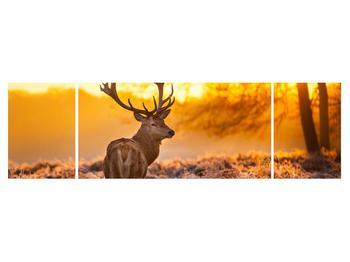 Obraz jeleňa (K011281K17050)