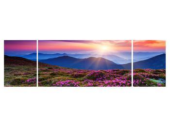 Obraz horské rozkvetlé krajiny (K011322K17050)